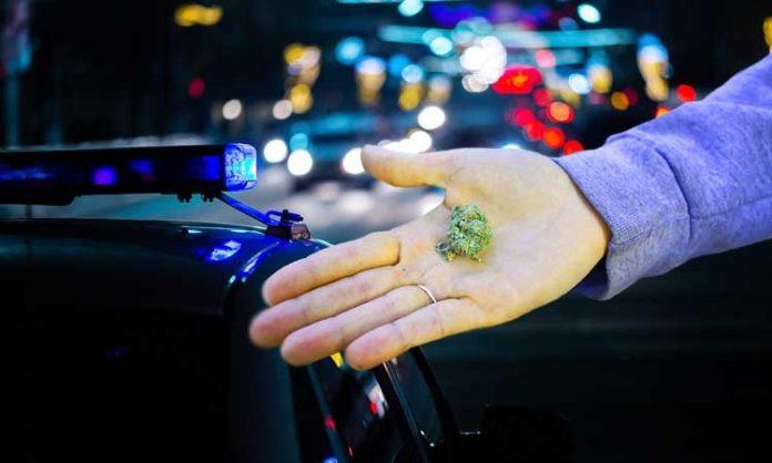 Fotomontage: eine Hand hält eine Marihuana-Blüte. im Hintergrund ein Polizeiwagen bei Nacht
