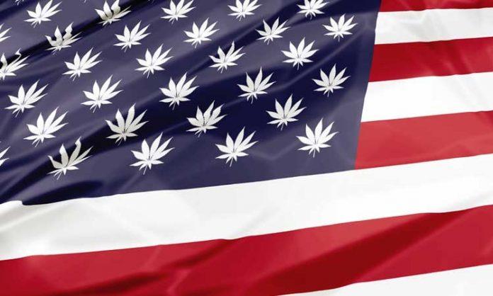 Eine im Wind wehende US-Flagge mit kleinen Hanfblättern anstelle der Sterne