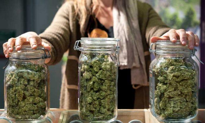 Gläser gefüllt mit Marihuana
