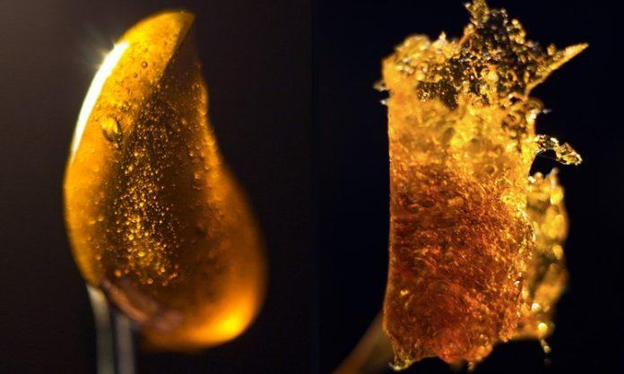 Cannabis-Extrakte im Close-Up