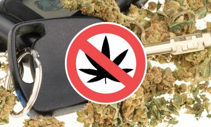 Autoschlüssel und Marihuanablüten