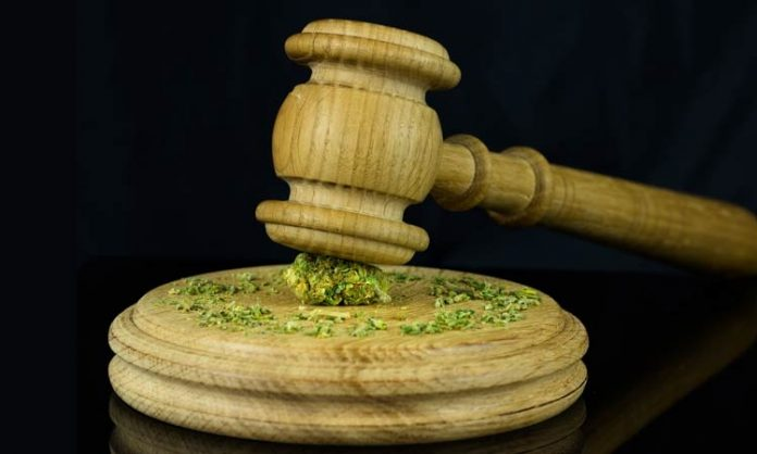 Gericht Cannabis