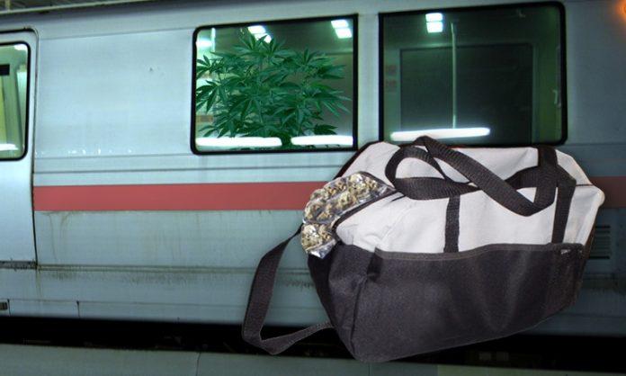 Fotomontage: Cannabispflanze im Zug, eine Sporttasche mit Marihuana
