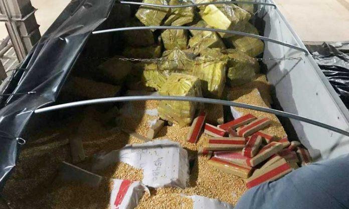 Verschweißtes Marihuana auf LKW-Ladefläche