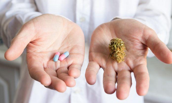 Ein Arzt hält Pillen und Marihuana in die Kamera