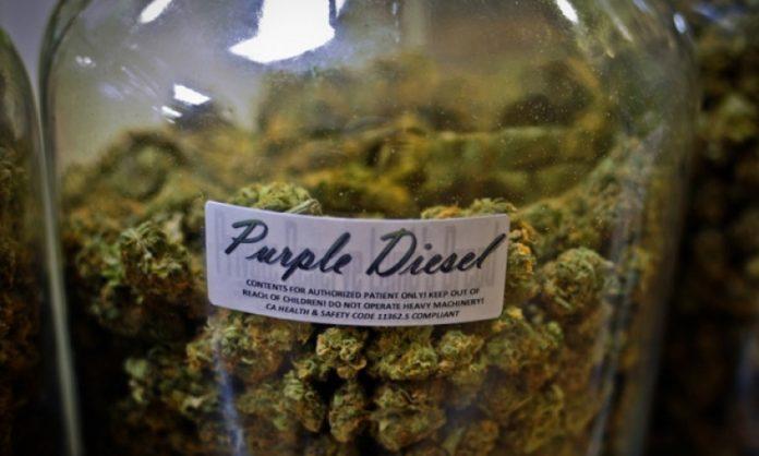 Purple-Diesel-Cannabis im Glas
