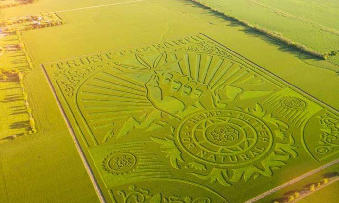 Luftaufnahme von Feld mit eingebrachtem Motiv