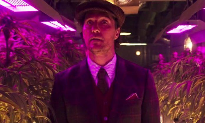 """Szene aus """"The Gentlemen"""": Matthew McConaughey vor Cannabispflanzen"""