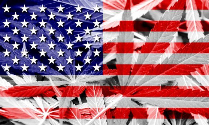 Eine transparente US-Flagge, Cannabisblätter scheinen hindurch