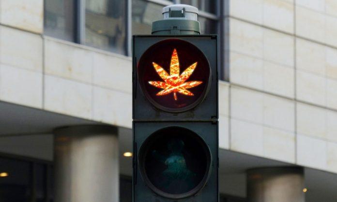 Eine Ampel, die ein rot leuchtendes Hanfblatt anzeigt