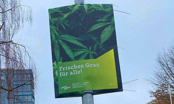 Wahlplakat der Grünen mit Hanfpflanzen