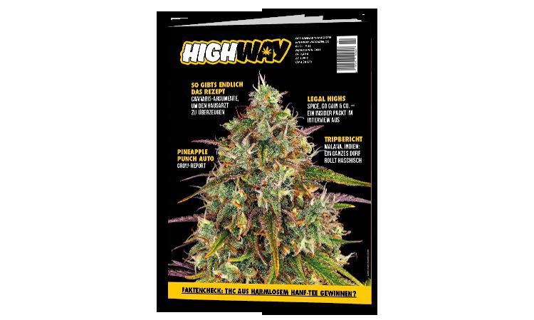 Highway - Das Cannabismagazin 02/2021