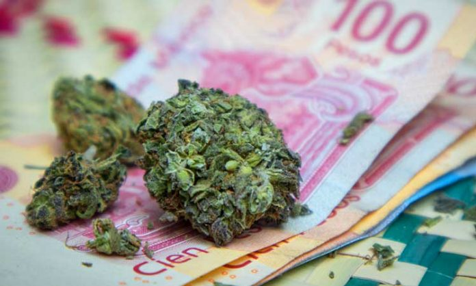 Marihuana-Blüten und mexikanische Pesos